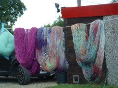 Dyeing Day at Maureen's (Lawshall) - Friday 2nd August 2019-4